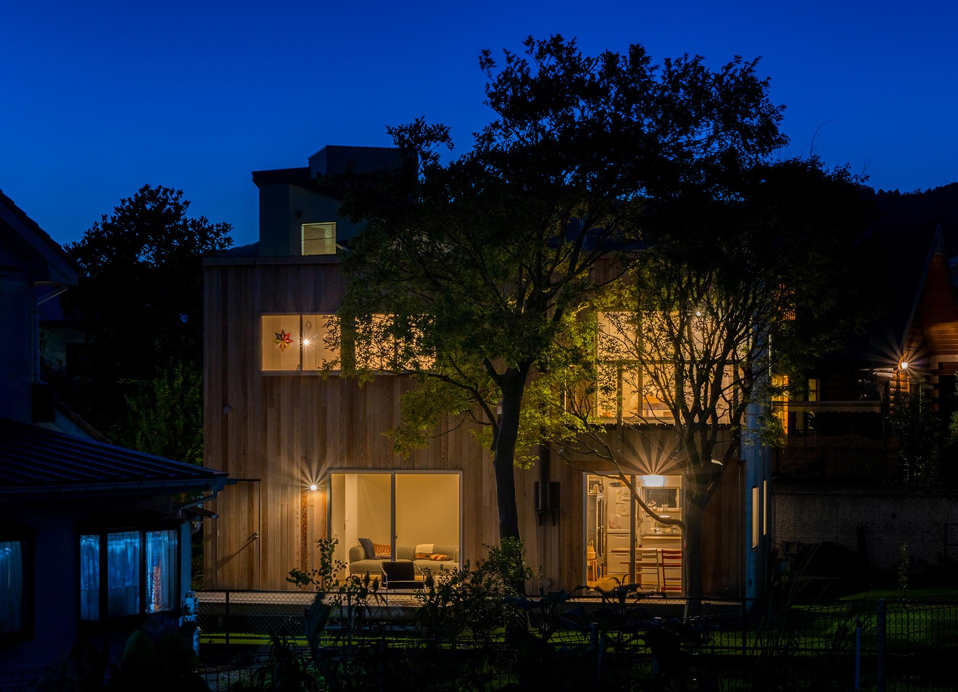 樹のある家 イメージ06 撮影:東涌宏和