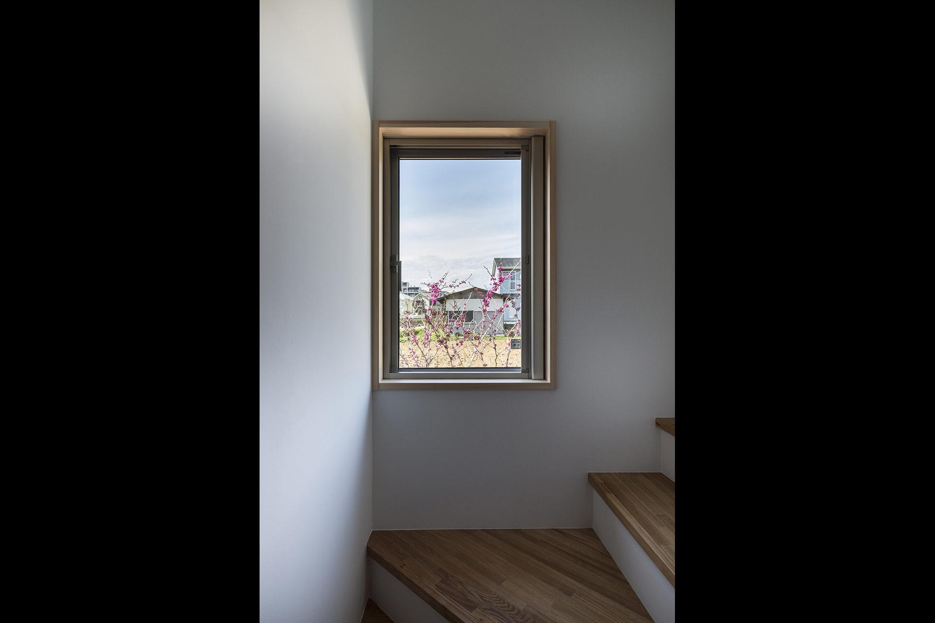 鶴川の家 Ⅳ イメージ9 撮影:東涌写真事務所・東涌宏和