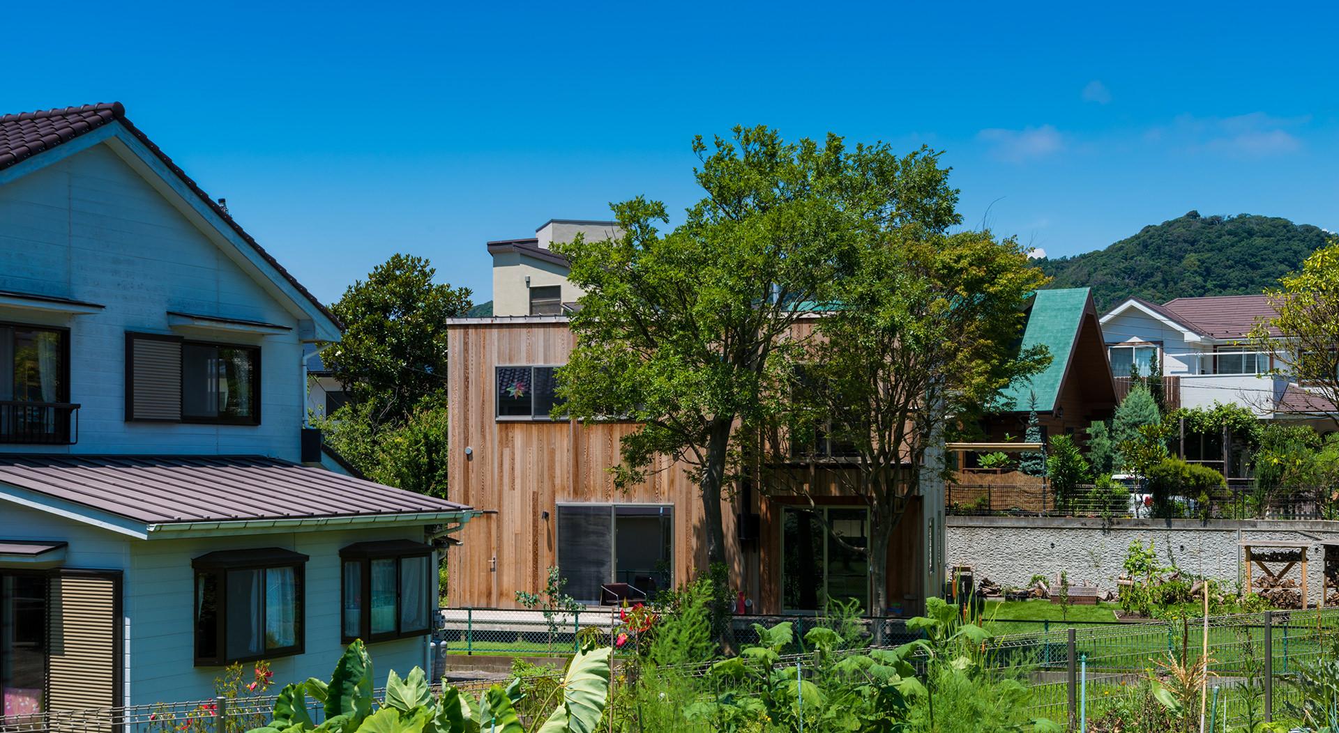 樹のある家 イメージ01 撮影:東涌宏和